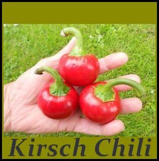 Kirsch Chili