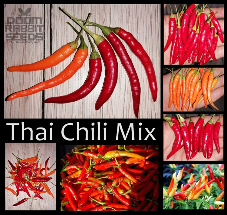Thai Chili Mix